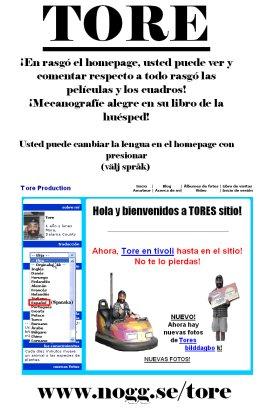 En gammal affisch där vi marknadsför hemsidan. På Spanska?! Oscar skulle resa till Spanien och passade på att affischera lite.